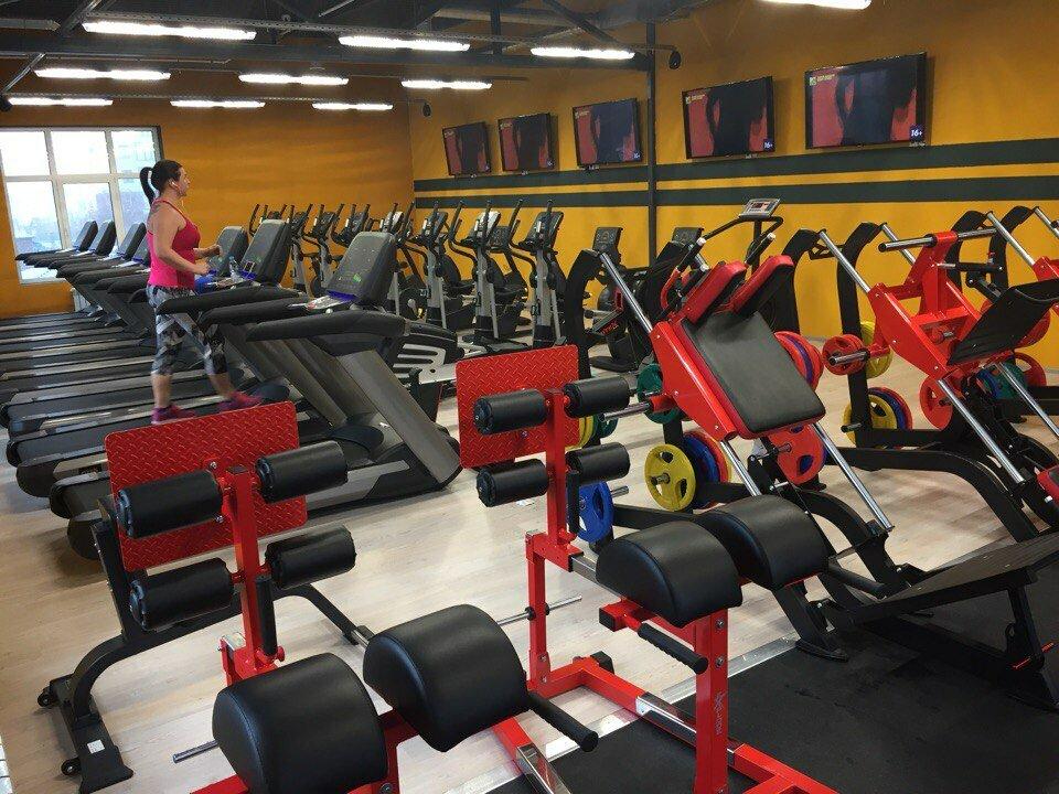 Gordey Gym Мира